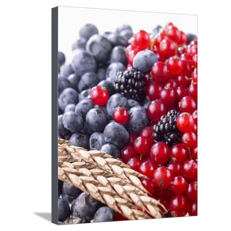 Mixed Berries and Ear of Spelt Wheat Stretched Canvas Print Wall Art By Barbara Lutterbeck