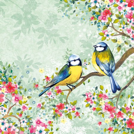 Image of Ambiente Bird Watching Green Cocktail Napkins, 20 Ct