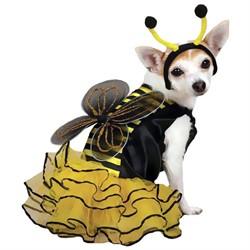 Bee Mine Dog Costume Yellow - XSMALL