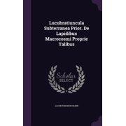 Lucubratiuncula Subterranea Prior. de Lapidibus Macrocosmi Proprie Talibus