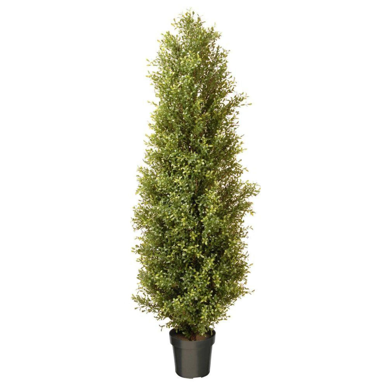 "72"" Potted Tall Artificial Two-Tone Green Argentia Plant"