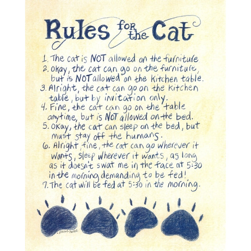 LPG Greetings Life Lines Rules For the Cat by Lori Voskuil-Dutter Textual Art Plaque