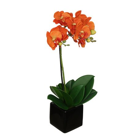 House of silk flowers inc artificial baby cube ceramic orchid house of silk flowers inc artificial baby cube ceramic orchid flowers in pot set mightylinksfo
