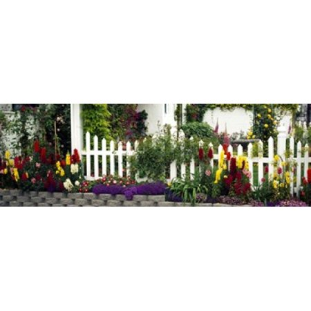 Flowers and picket fence in a garden La Jolla San Diego California USA Canvas Art - Panoramic Images (18 x (San Diego Fence)