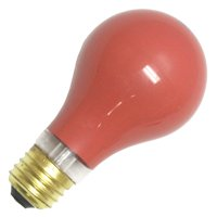 Damar Light Bulbs - Walmart com