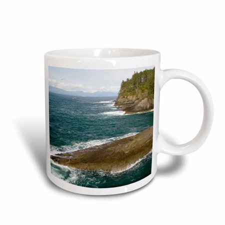 3dRose Cape Flattery, Makah Nation Tribal lands, Washington - US48 TDR0151 - Trish Drury, Ceramic Mug, 15-ounce