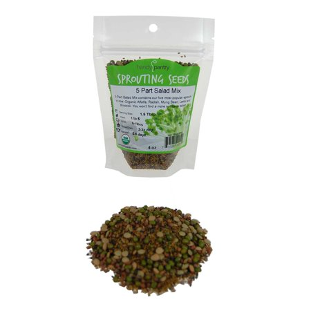 3 Part Salad Sprout - 5 Part Salad Sprout Seed Mix -1/4 Lbs (4 Oz) - Handy Pantry Brand - Organic Sprouting Seeds: Radish, Broccoli, Alfalfa, Green Lentil & Mung Bean - For Sprouts