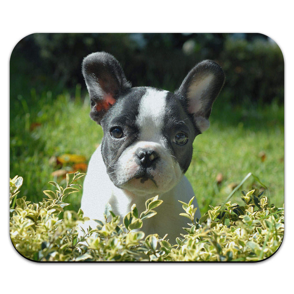 Black and White French Bulldog Puppy - Frenchie Dog Pet Mouse Pad