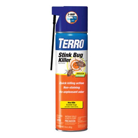 Terro Stink Bug Killer Aerosol Spray (Best Way To Kill Stink Bugs)