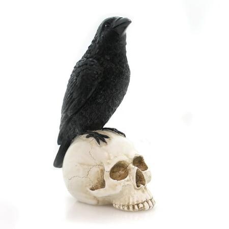Halloween CROW ON SKULL FIGURINE Polyresin Raven Bird Z6655 - Raven's Halloween Ball