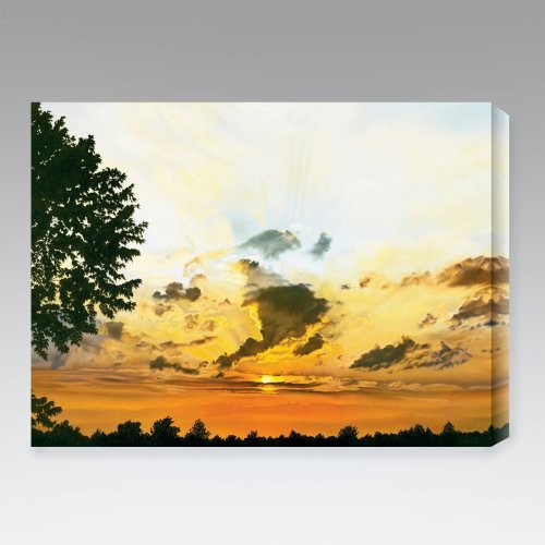 Sunset Indoor/Outdoor Canvas Print by Jon Eric Narum