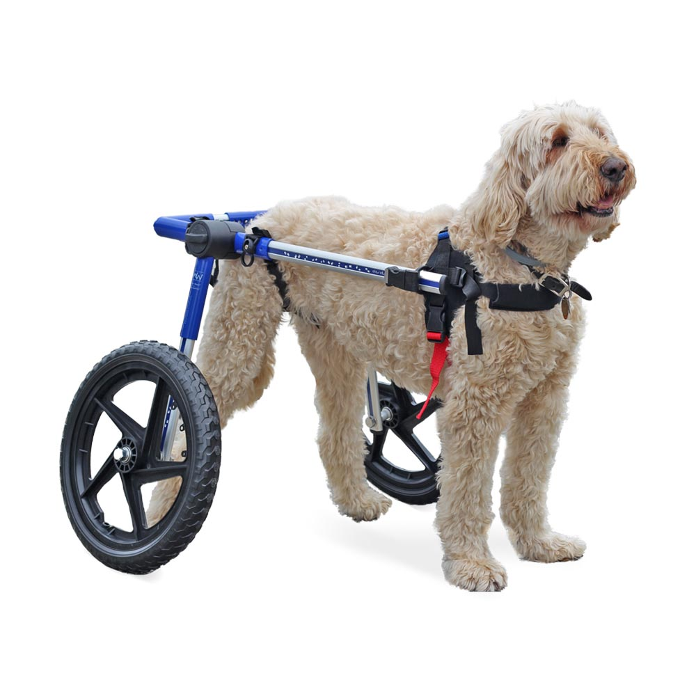 Dog Wheelchair - For Med/Lg Dogs 50-69 lbs - Veterinarian Approved