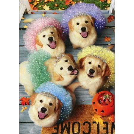 Avanti Press Golden Puppies Trick Or Treating Dog Deluxe Matte Halloween Card](Happy Halloween Dog Cards)