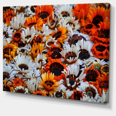 Colorful Sunflowers in Garden - Floral Canvas Art Print - image 1 de 3