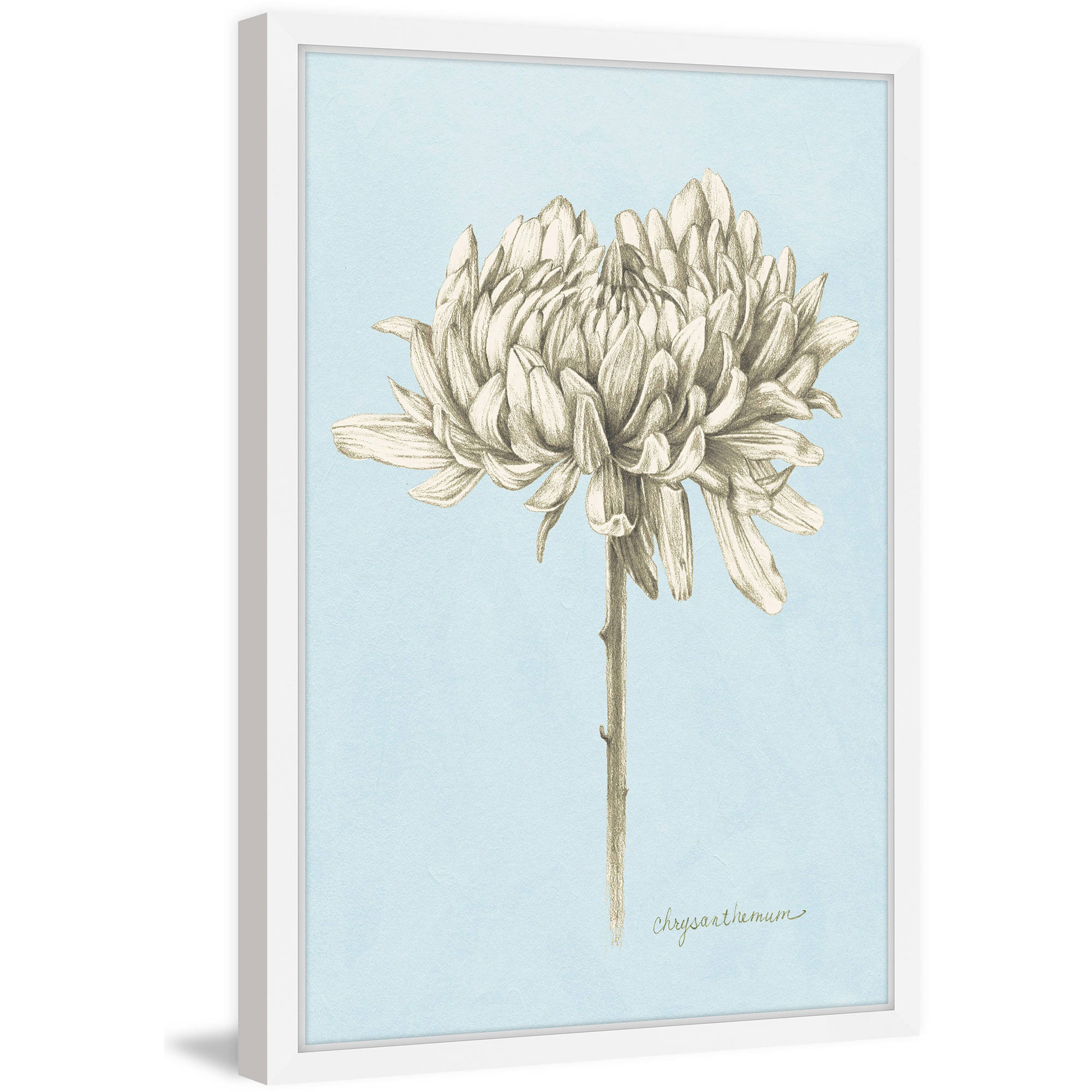 """Marmont Hill """"Botanical Study II"""" Framed Painting Print"""
