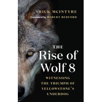 The Alpha Wolves of Yellowstone: The Rise of Wolf 8 (Hardcover)