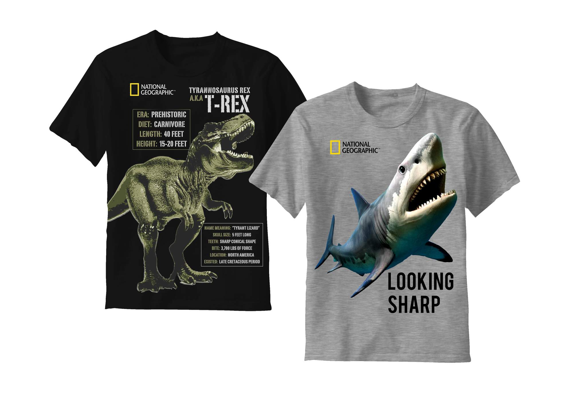 National Geographic Boys' 2-Pack Graphic Tee by C-Life Group Ltd.