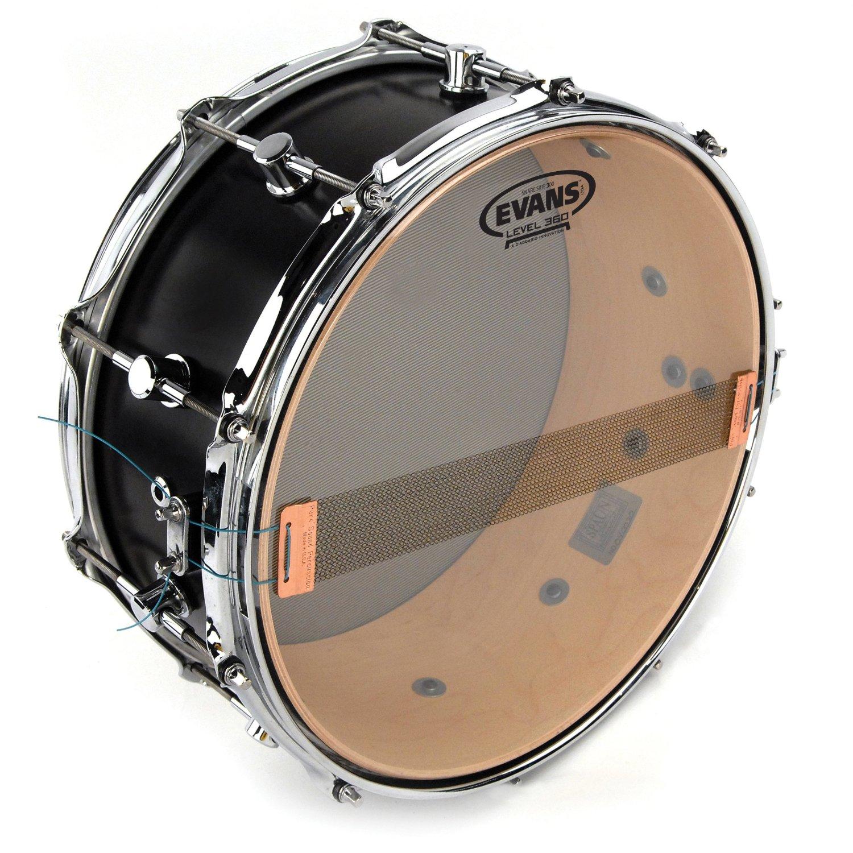 "Evans 300 Snare Side Drum Head (12"")"