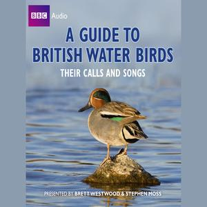 A Guide To British Water Birds - Audiobook