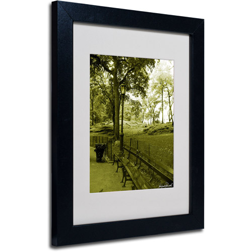 """Trademark Fine Art """"Pines IV"""" Matted Framed Art by Miguel Paredes"""