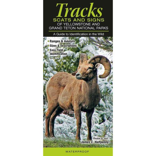 Tracks, Scats & Signs of Yellowstone & Grand Teton National Parks: A Guide to Identification in the Wild