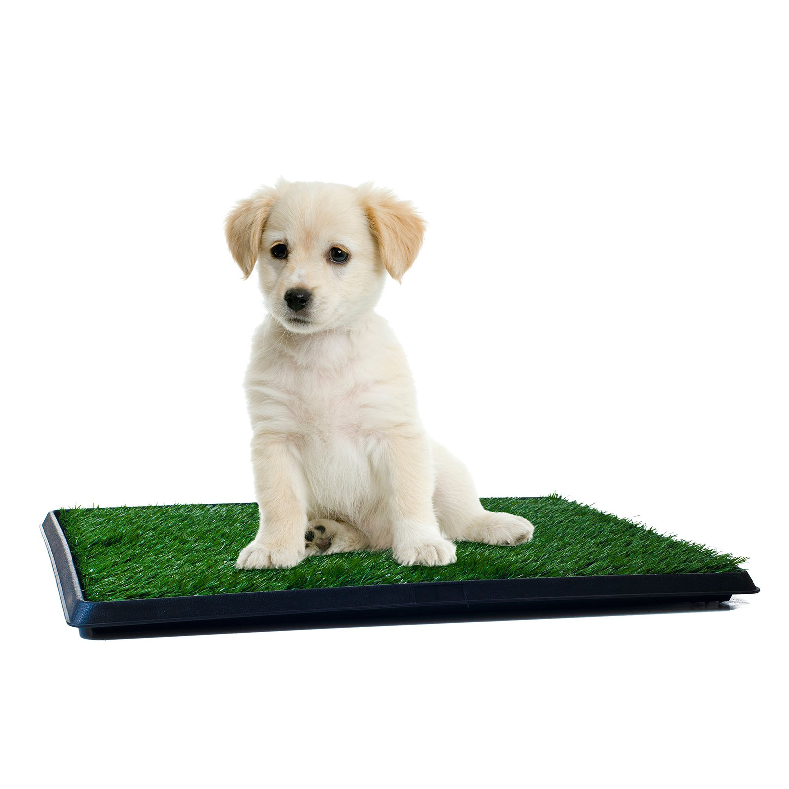 PETMAKER Puppy Potty Trainer - The Indoor Restroom for Pets 16 x 20 in