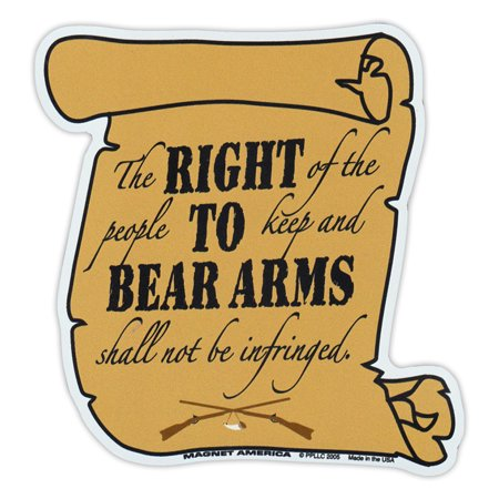 Magnetic Bumper Sticker - 2nd Amendment, Right To Bear Arms - Second Amendment Gun Rights - 4.5