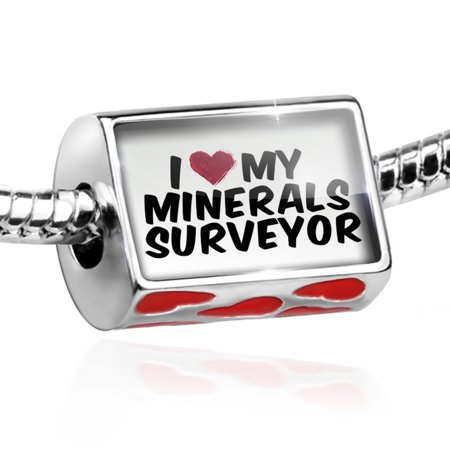 Bead I Heart Love My Minerals Surveyor Charm Fits All European Bracelets