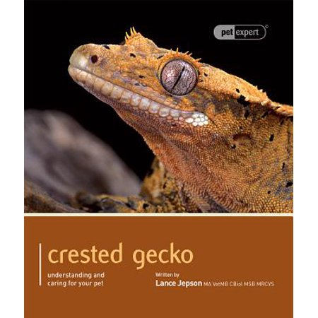 - Crested Gecko : Understanding and Caring for Your Pet
