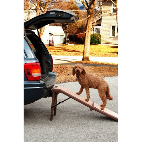 Pet Gear Free Standing 56'' Pet Ramp
