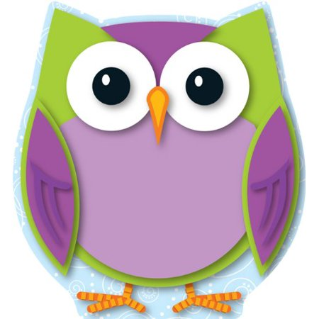 Carson Dellosa Colorful Owl Cut-Outs (120133), Mini cut-outs can be used for more than just decoration By Carson-Dellosa](Cut Out Decorations)