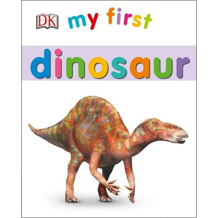 My 1st Dinosaur (Board Book)