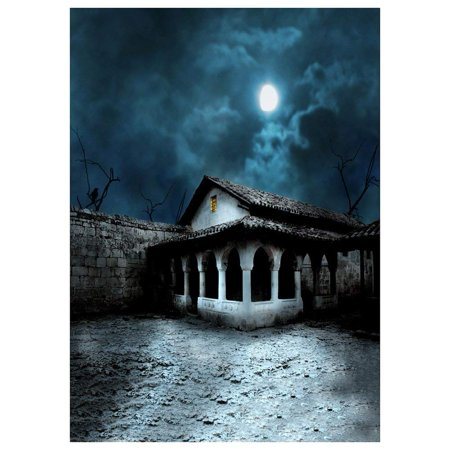 ABPHOTO Polyester Photography Background Magic Theme Studio background Horror night abandoned retro stone brick house branches crow moon for Halloween 7x5ft (Inside The Magic Halloween Horror Nights)