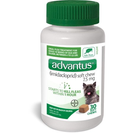 Bayer Advantus Soft Chew Flea and Tick Treatment for Small Dog, 30 Soft Chews