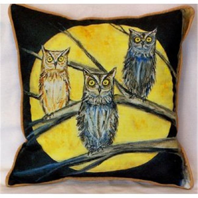 Betsy Drake HJ248 Night Owls Indoor & Outdoor Throw Pillow, 18 x 18 in. - image 1 de 1