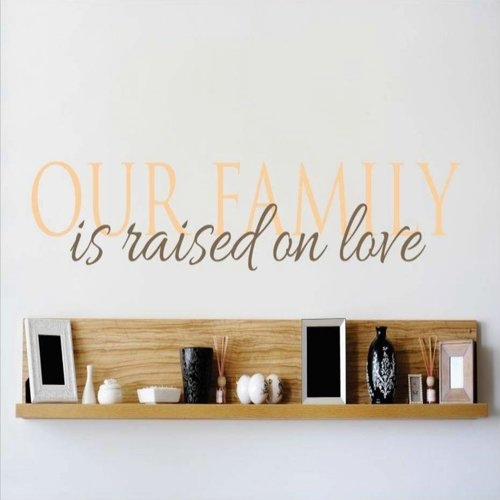 Design With Vinyl Our Family is Raised on Love Wall Decal