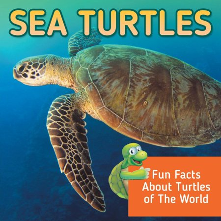 Sea Turtles: Fun Facts About Turtles of The World (The Oldest Sea Turtle In The World)