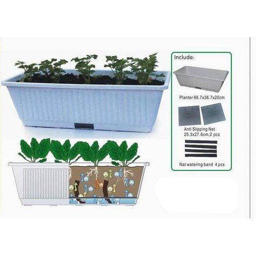 Creative Motion Garden Vegetable Planter Kit