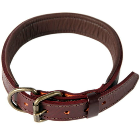 Logical Leather Padded Leather Dog Collar, Brown - (Black Leather Spiked Dog Collar)