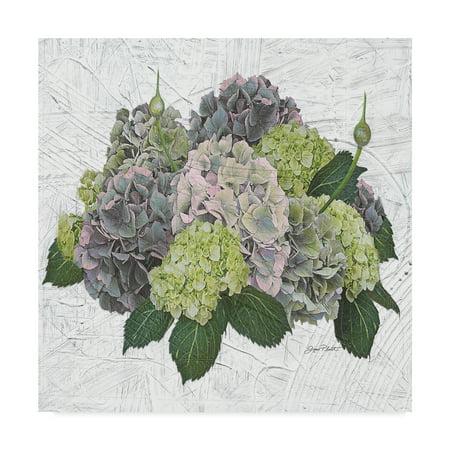 Hydrangea Art (Trademark Fine Art 'Hydrangea Vignette Blue' Canvas Art by Jean Plout)