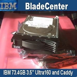 "IBM 73.40 GB 3.5"" Internal Hard Drive SCSI - 10000 - 8 KB Buffer - Hot Swappable - 1 Pack - 06P5756"