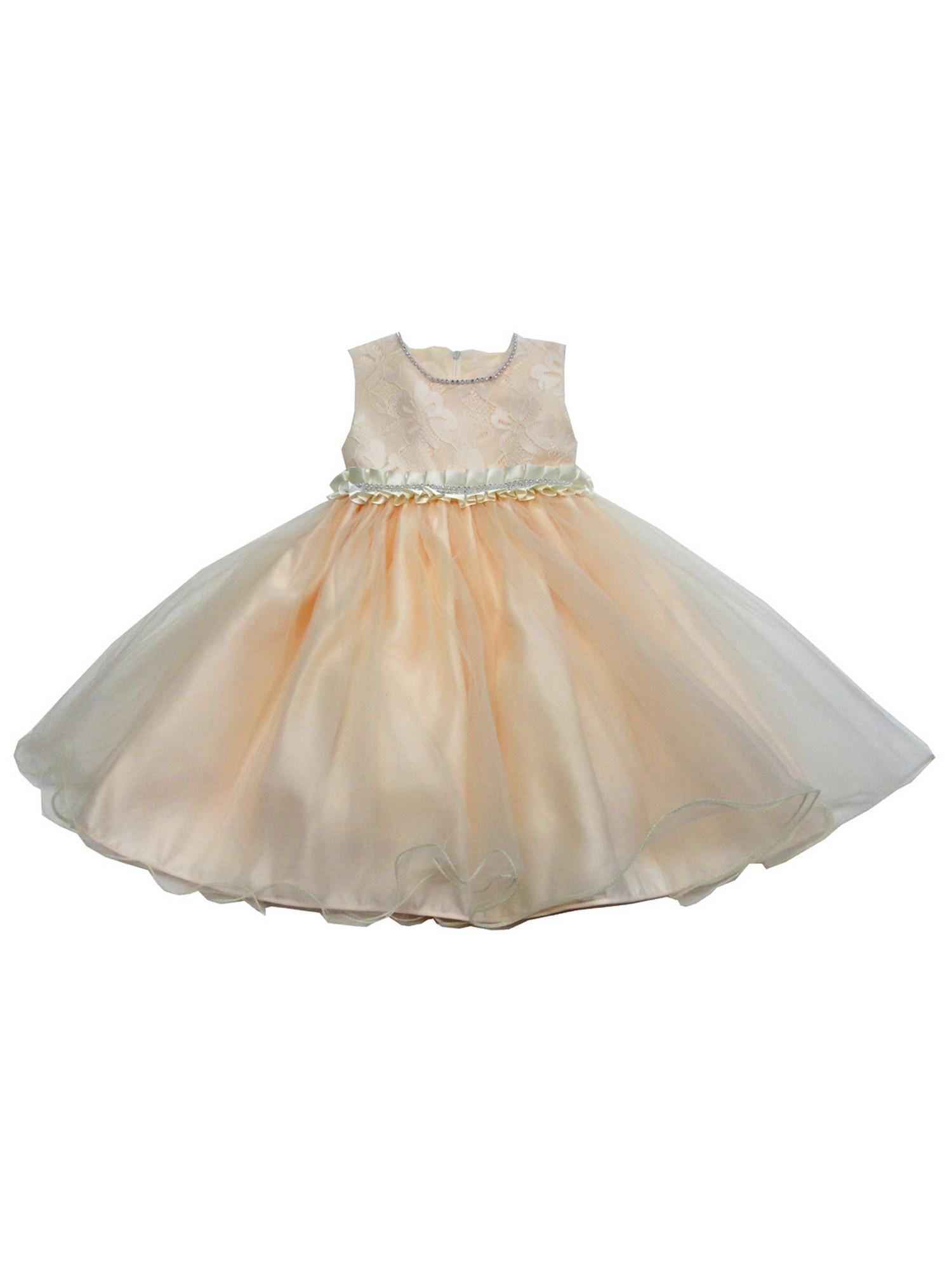 Baby Girls Champagne Glitter Trim Embroidered Organza Flower Girl Dress