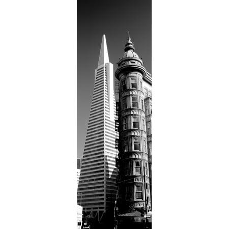 Low angle view of towers Columbus Tower Transamerica Pyramid San Francisco California USA Canvas Art - Panoramic Images (12 x