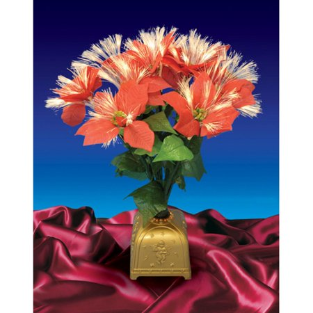 Northlight 20 in. Pre Lit Fiber Optic Poinsettia Christmas - Christmas In Cotton Plant