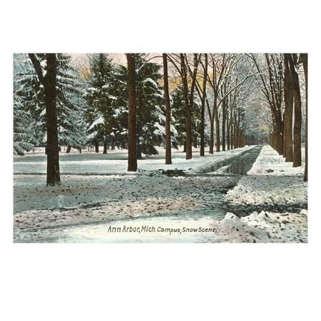 University in Winter, Ann Arbor, Michigan Print Wall - Party Store Ann Arbor