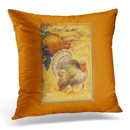 Vintage Thanksgiving Decorations (BPBOP Turkey Vintage Thanksgiving Harvest Fall Autumn Bounty Happy Pillowcase Cover 20x20)