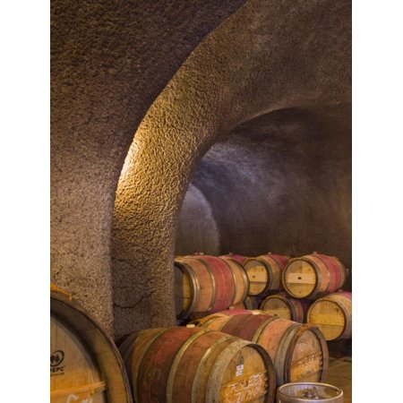Barrels in Cellar at Long Meadow Ranch Winery, Ruthford, Napa Valley, California, USA Print Wall Art By Janis Miglavs (Napa Cellars Winery)