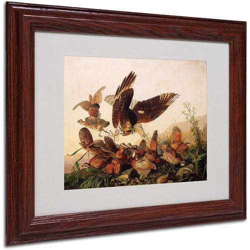 "Trademark Fine Art ""Red-Shouldered Hawk"" Canvas Art by John James Audubon, Wood Frame"