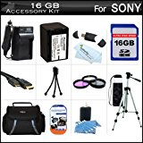 16GB Accessory Kit For Sony HDR_PJ710V, HDR_PJ760V, HDR_C...