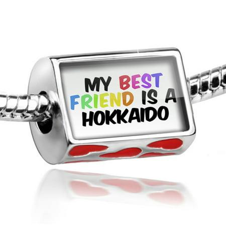 Bead My best Friend a Hokkaido Dog from Japan Charm Fits All European (Best Friends In Japanese Symbols)